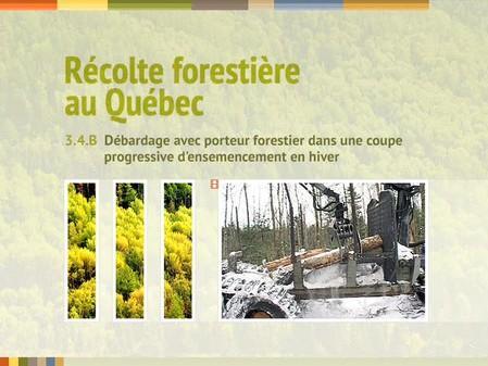 Vidéo : 3.4.B Débardage avec porteur forestier dans une coupe progressive d'ensemencement en hiver